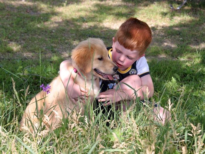 Животные непосредственны и фотогеничны, как и дети